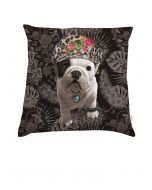 Cushion Teo Nova