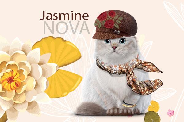 Jasmine Nova